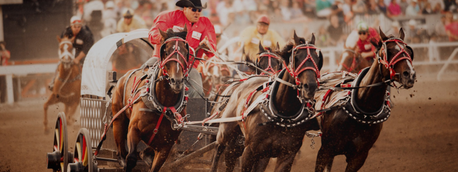 Gmc Rangeland Derby Chuckwagon Tickets Calgary Stampede